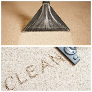 carpet bond cleaning