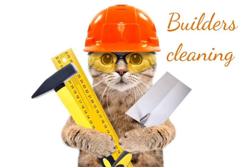 """a cat wearing a safety hat and safety glasses while holding a shovel, hammer and ruler. The words """"builders cleaning"""""""