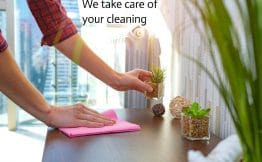 A person wiping a wooden table with a pink microfibre cloth while holding a small potted plant in a glass container. Two other potted plants and two string balls are on the table, which is pushed against the wall. In the background you can see a city skyline through a full length window. The caption is We take care of your cleaning.