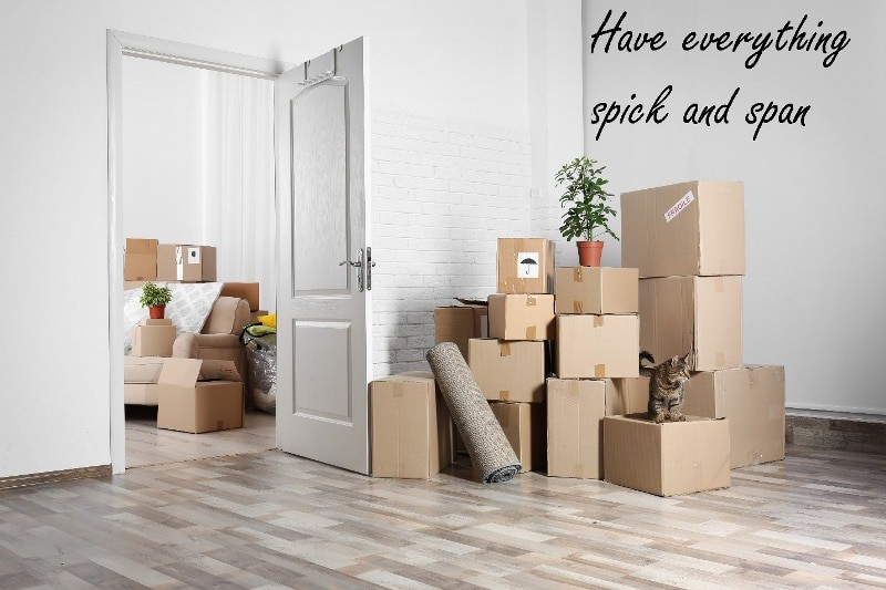 A pile of about 15 boxes in a white room next to an open, white wooden door. A cat and a potted plant are standing on different boxes with a roll of carpet leaning against another box. Through the open door is a couch with more boxes and another potted plant stacked on or around the couch.