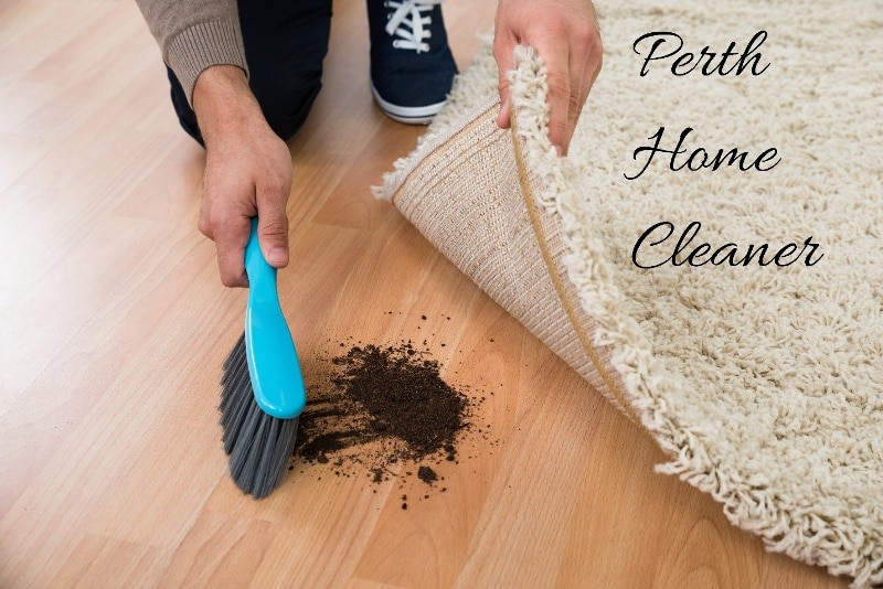 A man on one knee and wearing converse sneakers is holding the corner of a shaggy rug up and appearing to sweep potting mix under it using a small, blue broom.