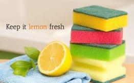 a cut lemon with a stack of sponges captioned keep it lemon fresh